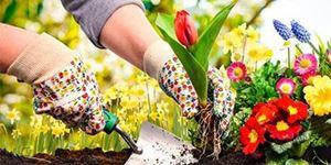 """Life's a Garden... Dig it!"""